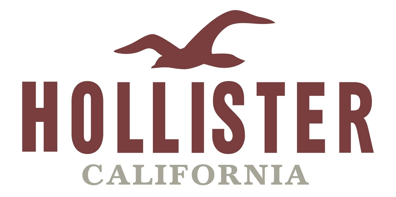 Hollister Usa