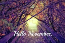 Hello-November3
